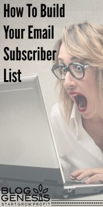 how-to-build-your-email-subscriber-list-bloggenesis